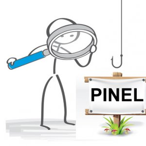 engagement-pinel